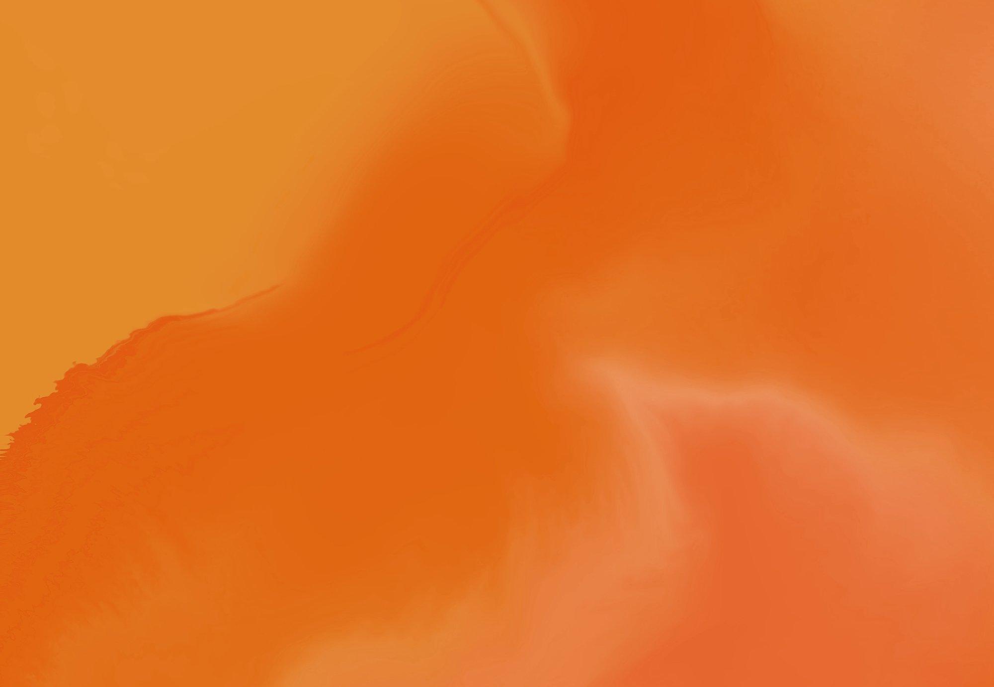 etusivu-netprofile